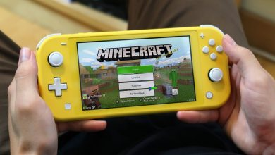 New Minecraft Update in Switch is causing problems